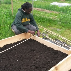 Chanelle building a raised bed.